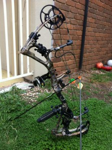 Bear Archery Motive 62
